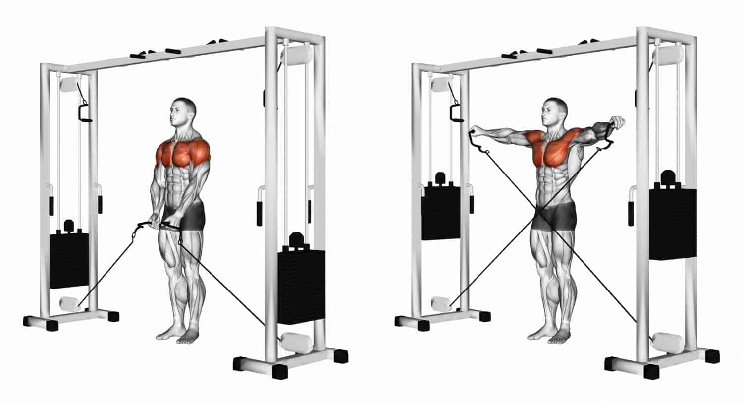Cable lower chest raise machine at the gym