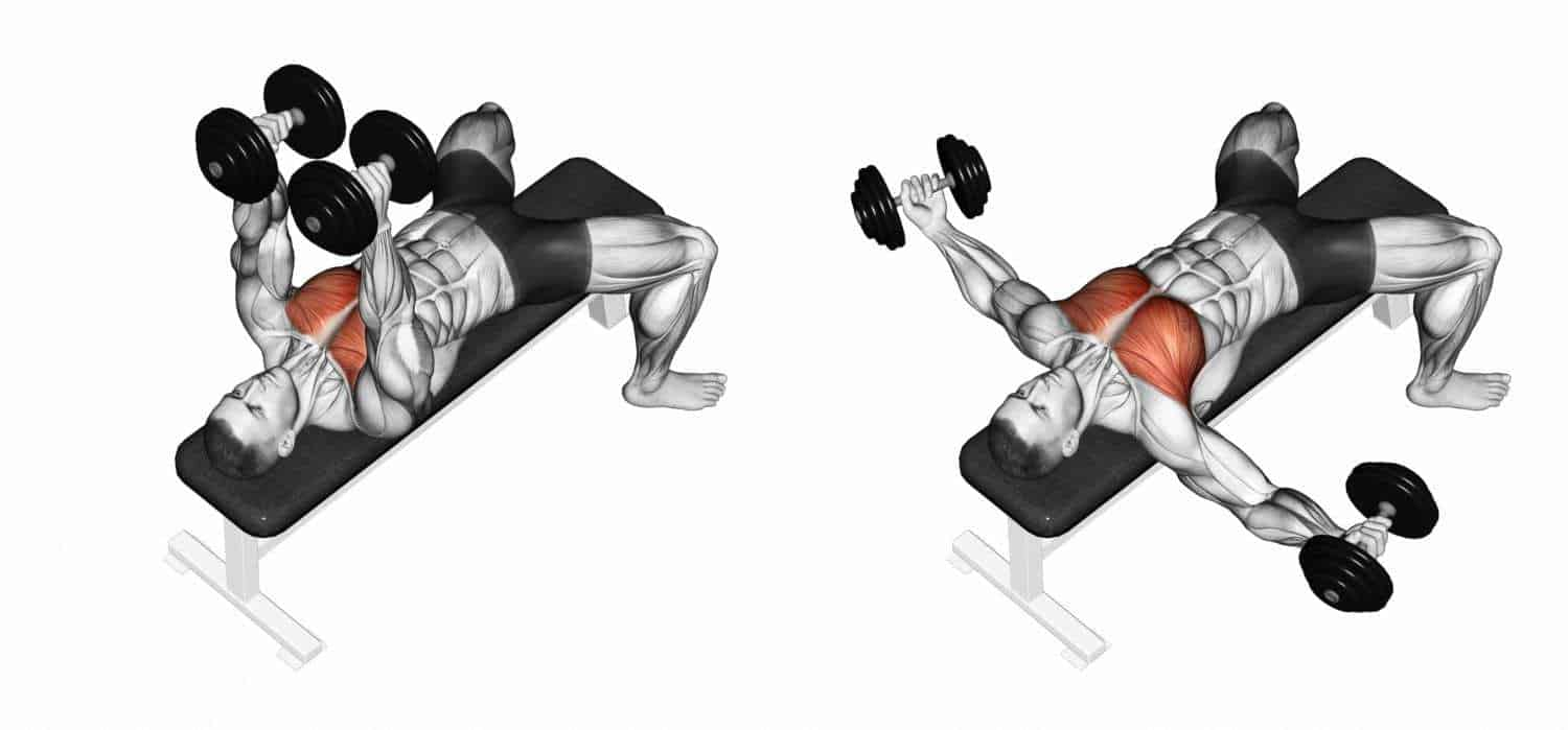 decline dumbbell flyes, a lower chest workouts