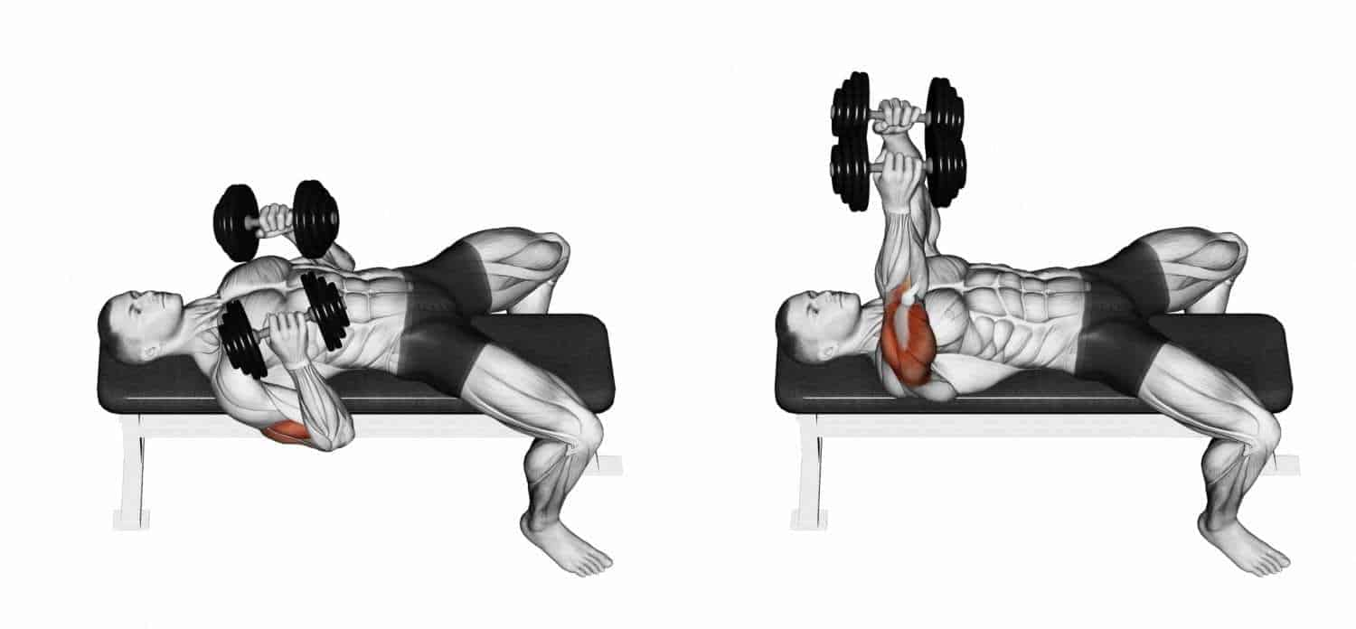 Decline Dumbbell Press With A Rotation., a lower chest workouts