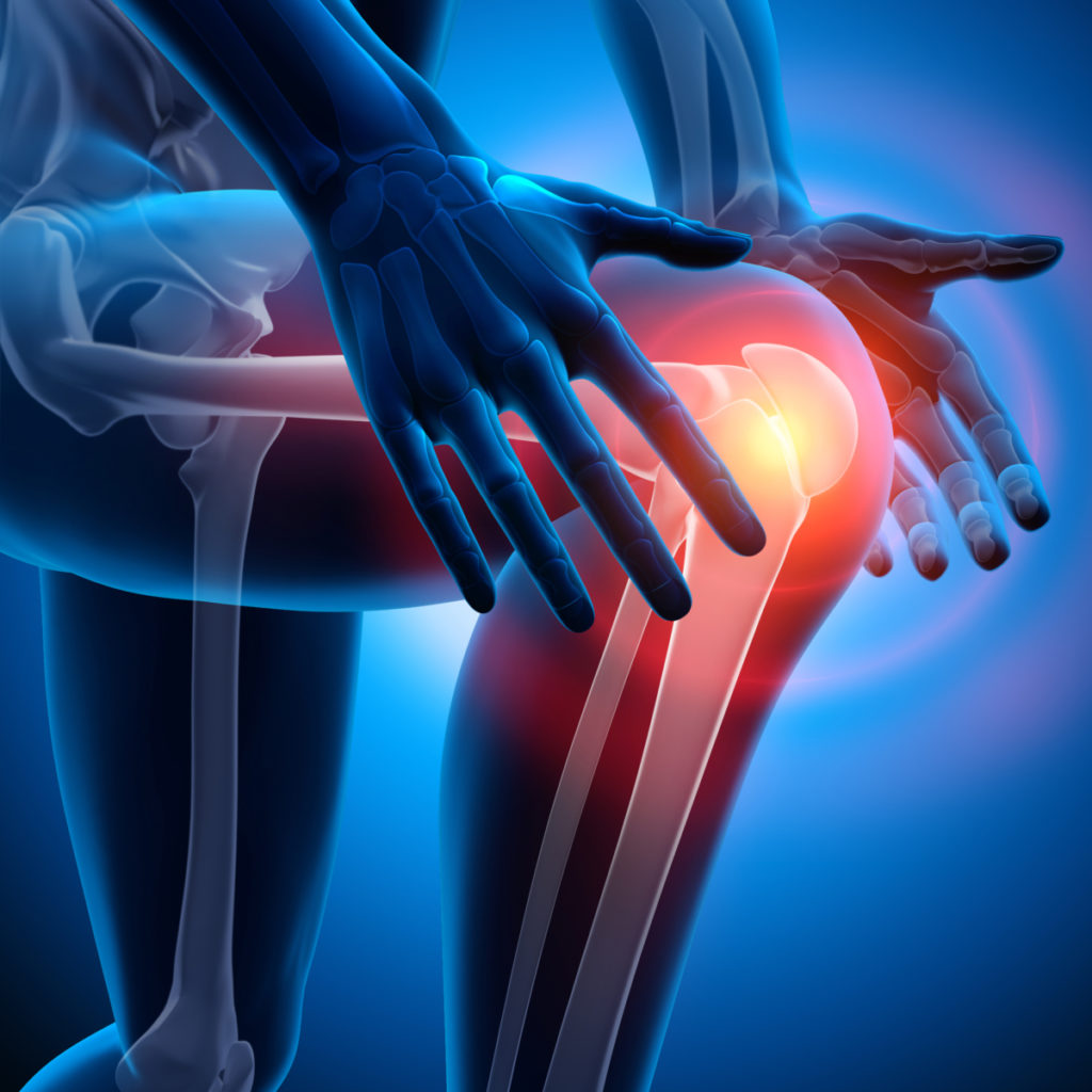 An animated picture of the lower body of a person seen like an xray with the knee joint being displayed with a red ring around it i n reference to knee pain during a hindu squat