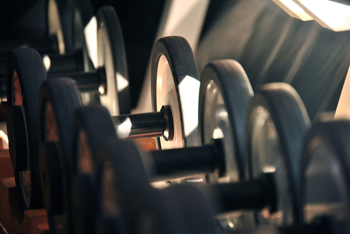 Picture of a row of dumbbells on a weight rack at a gym