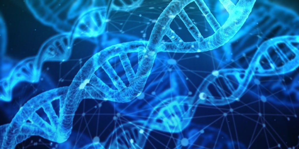 A picture of your DNA strands depicting how well Astragin helps you retain nutrients from your diet