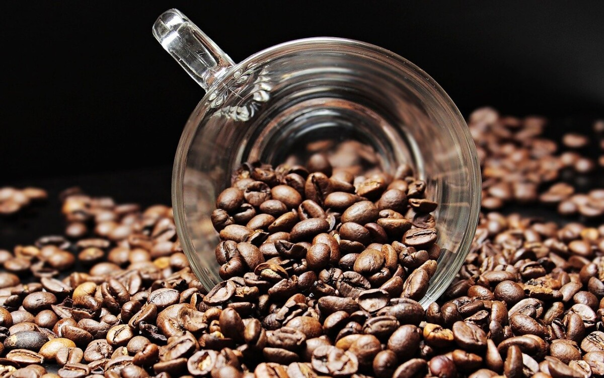 clear coffee cup sitting on its side in a pile of coffee beans, coffee is an ingredient in the diet pill PhenQ